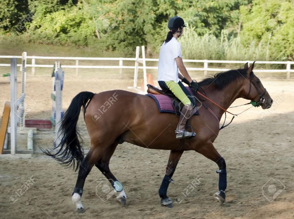 18055531-raza-riding-Foto-de-archivo